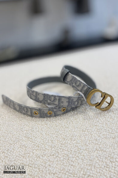 Dior saddle belt